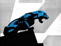 Panthers Study