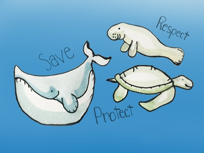 Ocean Animals Watercolor sketch illustration digital art wildlife logo activism save the earth ocean animals watercolor painting