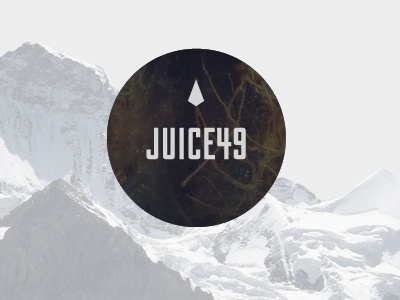 Juice49 logo mountains moss roots diamond circle geometric photographic