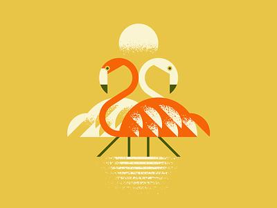 Mind the 'Mingos vector bird water flamingo design illustration