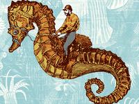 Seahorse racer