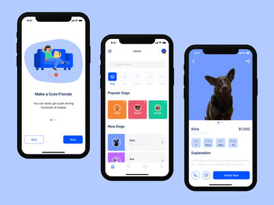 Pet Adoption App simple product designer dribbble app design catskills design ui ux colors concept minimal app animals pets dogs petshop pet care pet adoption product design cats