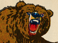 Color Halftone Grizzly Bear procreate retro vintage comic halftone illustration grizzly