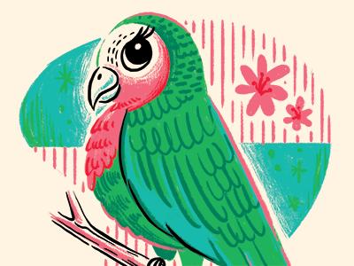 Lady parrot dribbble