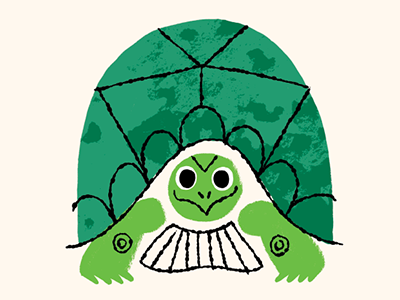 Backyard Turtle turtle illustration character backyard shell childrens book