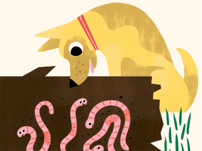 Curious Dog dog puppy worms log yard backyard book illustrations