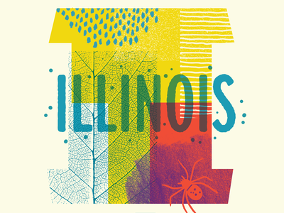 We're Coming to Illinois! illustration type collage nature textures spider bugs workshop illinois chicago