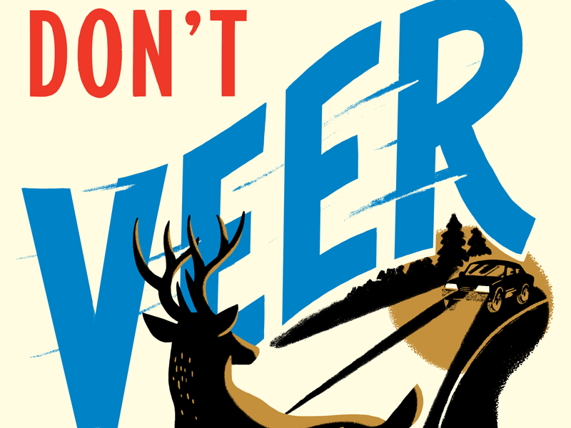 Don't Veer For Deer retro illustration lettering type psa deer poster