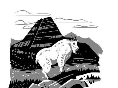 Mountain Goat WIP national parks digital illustration mountain goat pennant
