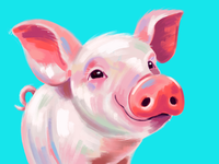 Painted Piglet