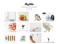 Tinyfolio - Total WordPress Theme Demo