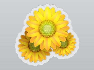 Sunflowers icons vector badge