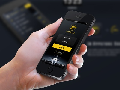 Privatesky startup interface app design user experience