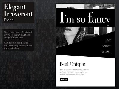 Fancy Shot blackwhite modern elegant web design