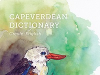 Dictionary Book Cover