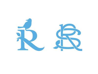 R School