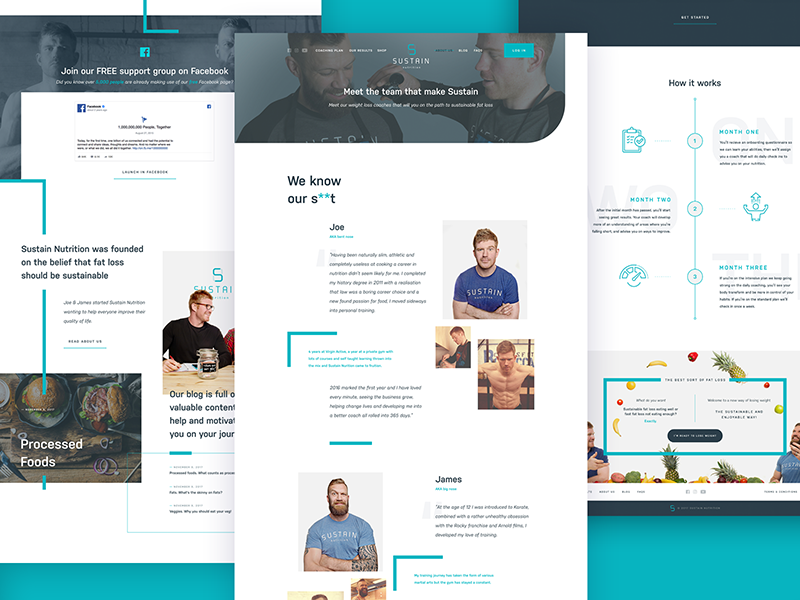 Sustain UI buttons clean colour flat homepage interface landing navigation product search ui ux
