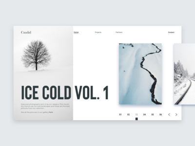 Ice Cold Vol. 1 - Landing Page