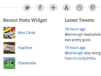 Theme Footer minimal social networks wordpress