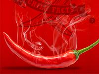 Bailey Farms Chile Pepper Site Design