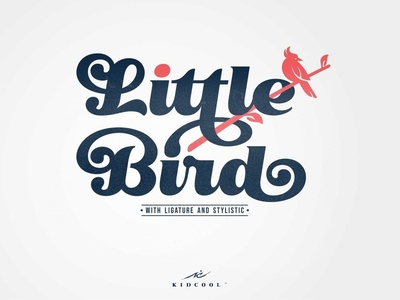 Little Bird Display Script Font