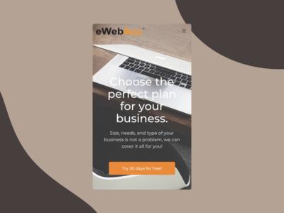 eWebAcc package