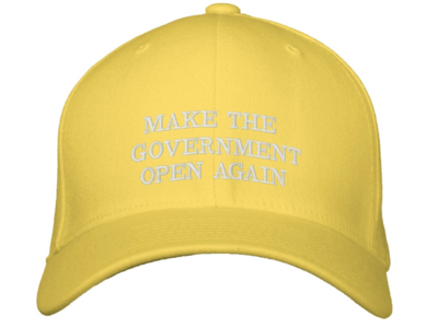 Make the Government Open Again Hat