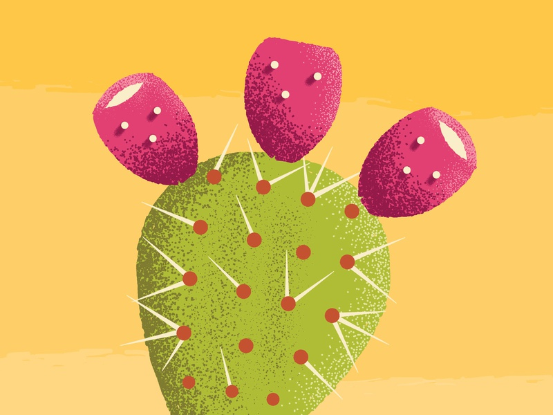 prickly pear desert southwest shading wip thorns cactus prickly pear texture design vector illustration