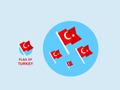 Flag of Turkey turk turkey turkish flag moon star icon