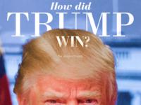 How Did Trump Win?