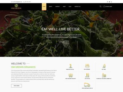 WordPress Woocommerce Landing Page design in Photoshop