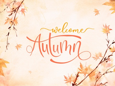 Welcome Autumn 2021 in Moldova! 3d motion graphics graphic design ui animation branding moldova chisinau cromatix creative cromatix creative image lab cromatixlab logo illustration design