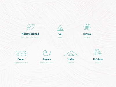 Hawaii Charter School Icons brand identity values icons icon set