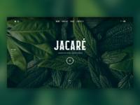 Jacaré - Restaurant Website