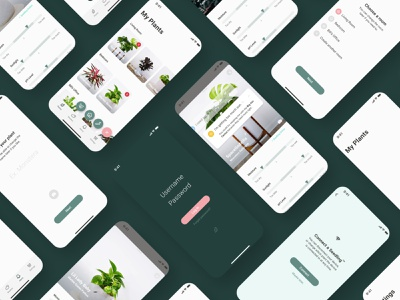 Seedling App presentation brand design design figma app mobile user research research ui ux plants