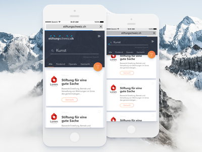 Stiftung Scweiz - Mobile - Search Results mountain swiss engine search