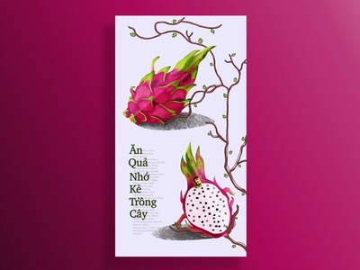 dragonfruit poster design