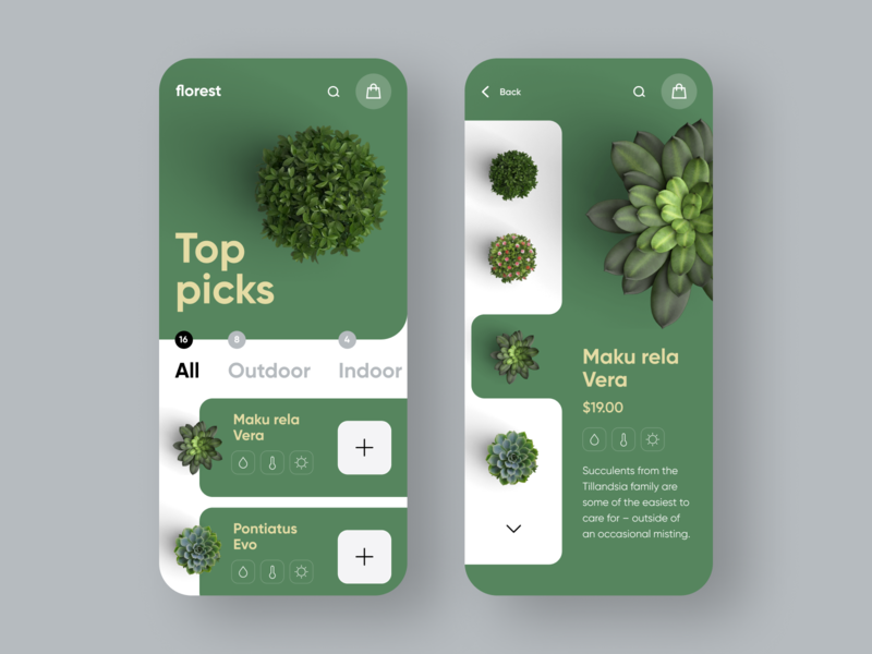 Florest store gold klein minimal minimalistic clean shop product grass flowers plant green flat 插图 ux ui mobile app design