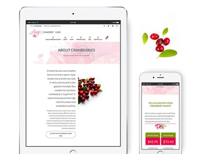 Amy's Cranberry Candy Web & Mobile Responsive Design candy mobile web design