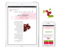 Amy's Cranberry Candy Web & Mobile Responsive Design