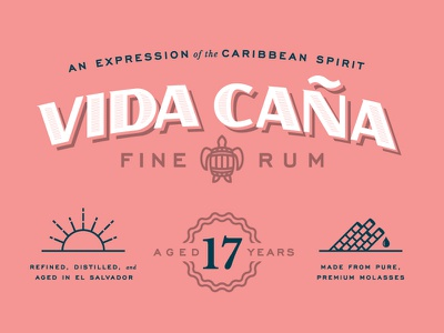 Vida Caña caribbean spirit turtle branding spirits typography rum