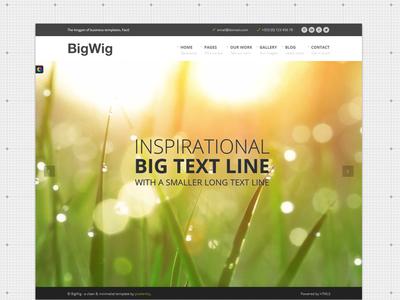 Bigwig Business Website Homepage website. web design ui video responsive template slider captions fullscreen business corporate