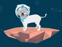 Stevie the space dog