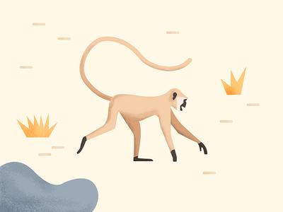 Mad about Monkeys_Owen Davey