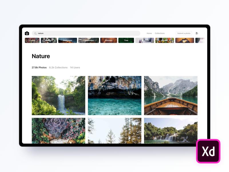 Unsplash (Adobe XD Freebie) light theme download landing page photography unsplash macbook trendy mockup free freebie xd adobe