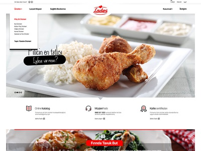 Lades Pilic design web