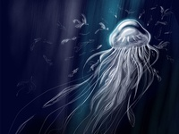 Jellyfish Silver Feather