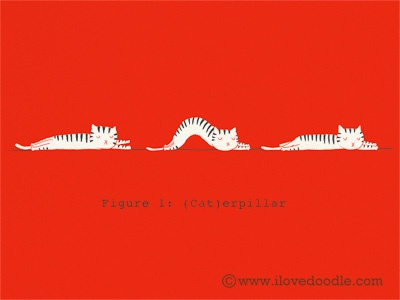 Caterpillar cat pet caterpillar lol funny humor illustration doodle wall art print