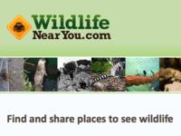 WildlifeNearYou.com