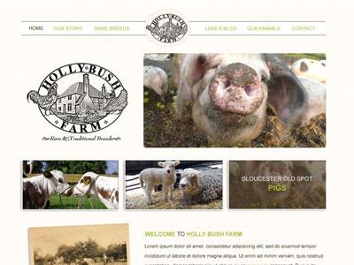 Holly Bush Farm  website farm cow sheep pig